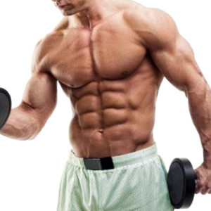 Hypertrophy Muscle Mass Weight Training